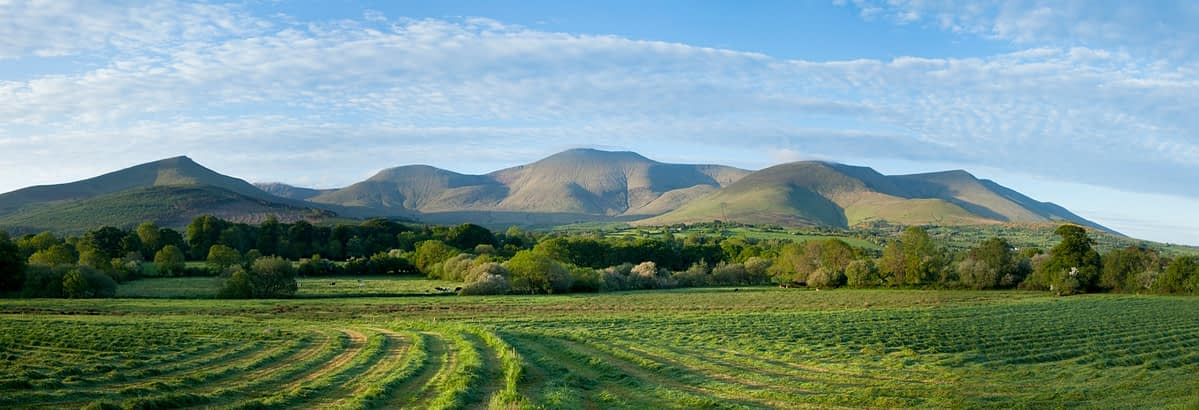 Silage cutting in the Glen of Aherlow, Galtee Mountains, Co Tipperary, Ireland.