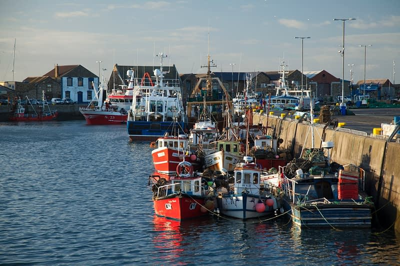 Fishing trawlers in Howth harbour, County Dublin, Ireland.