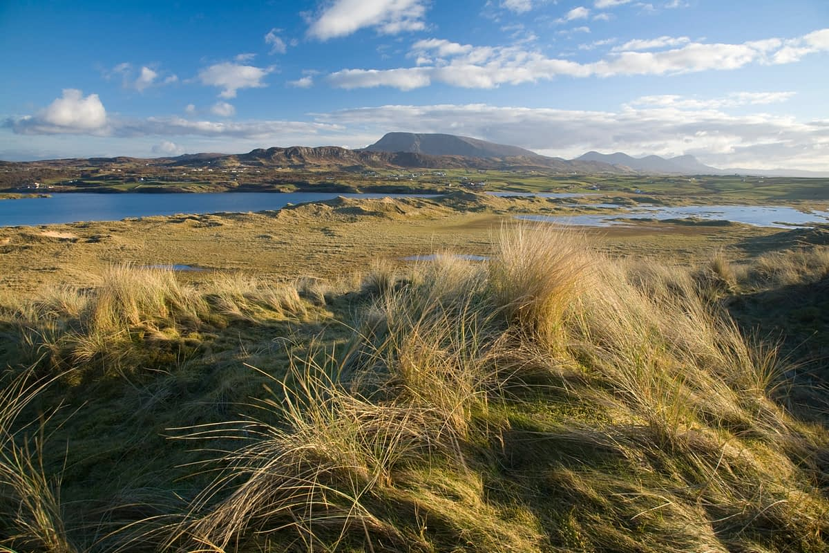 View of Muckish Mountain from Horn Head dunes, Co Donegal, Ireland.