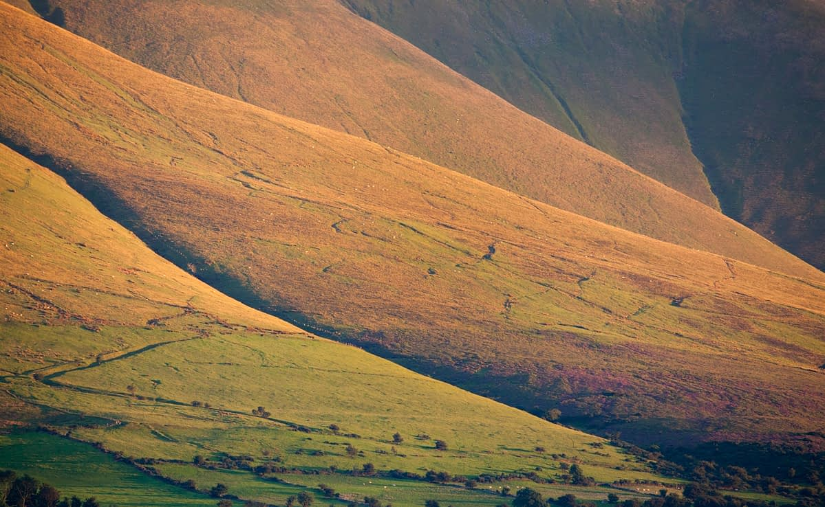Evening light on the slopes of the Galtee Mountains, County Tipperary, Ireland.