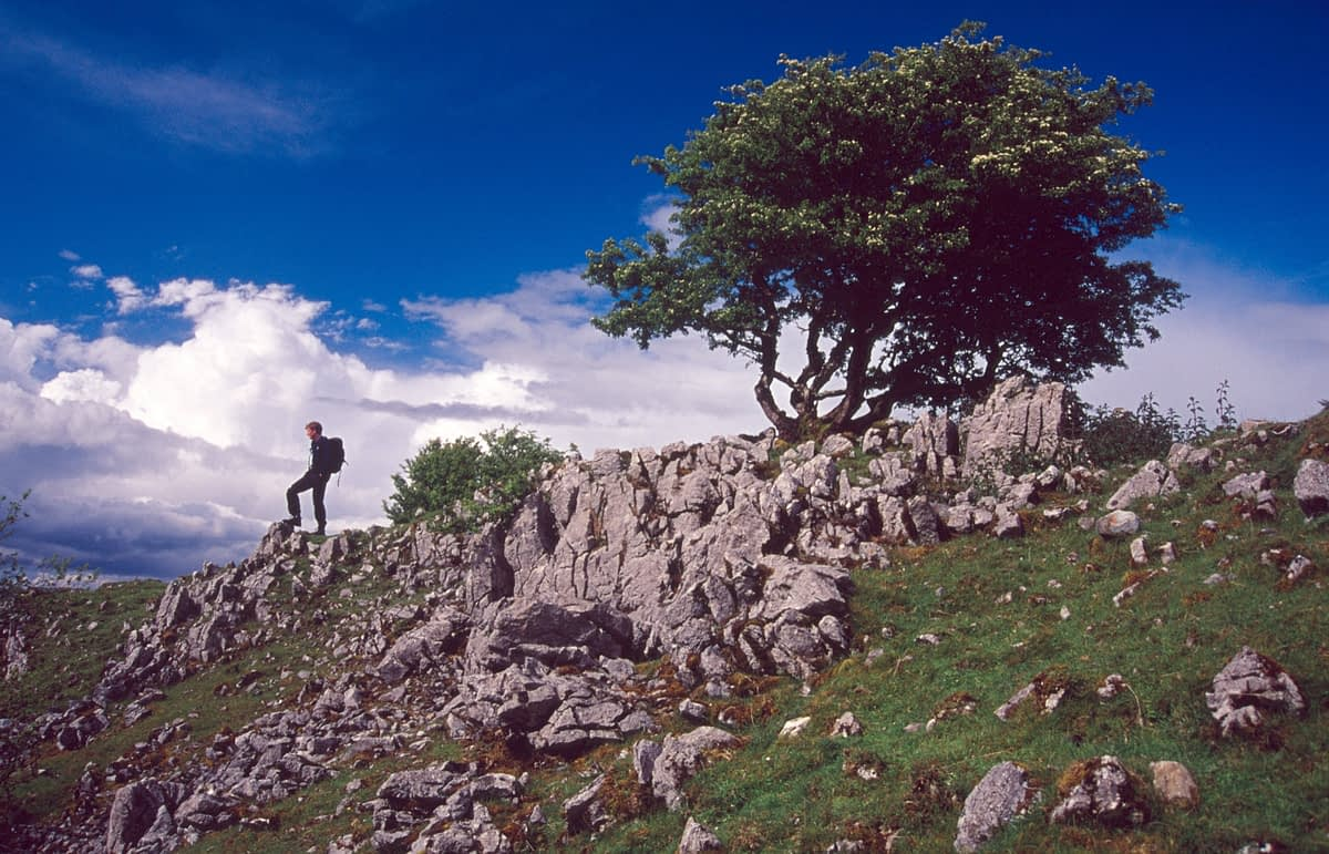 Walker on the Cuilcagh Way near Marble Arch, Co Fermanagh, Northern Ireland.