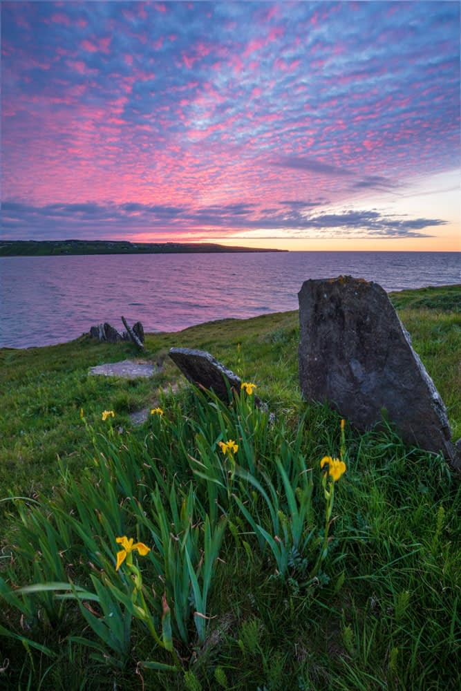 Flag irises and midsummer sunset, Lacken, County Mayo, Ireland.