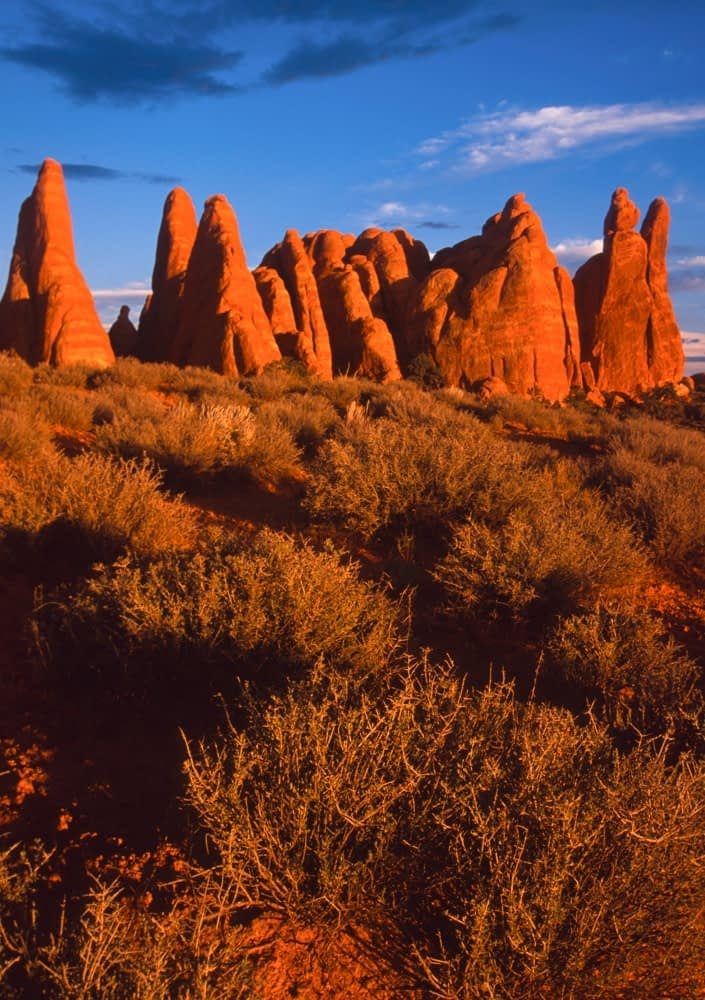Evening light on the Devil's Garden fins, Arches National Park, Utah, USA.