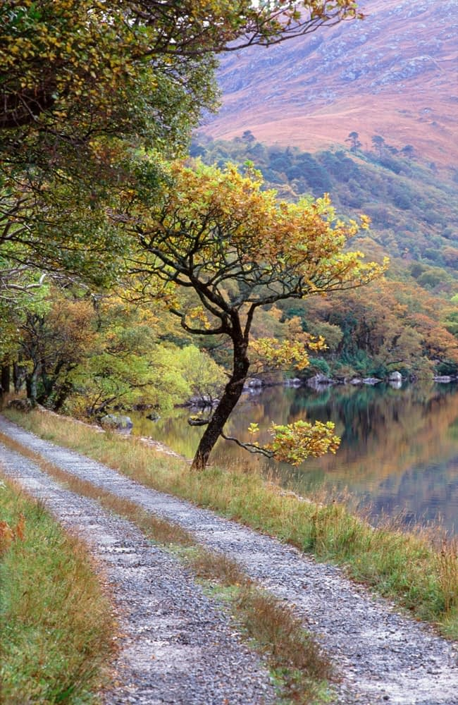 Track beside Lough Veagh, Glenveagh National Park, Co Donegal, Ireland.