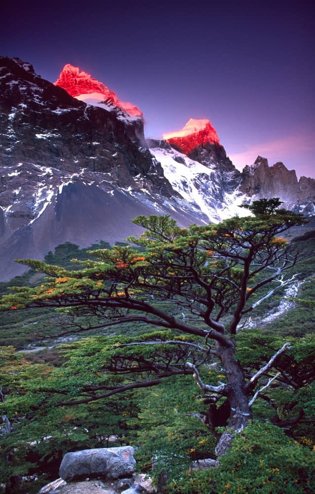 Cerro Paine Grande at dawn, French Valley, Torres del Paine NP, Patagonia, Chile.