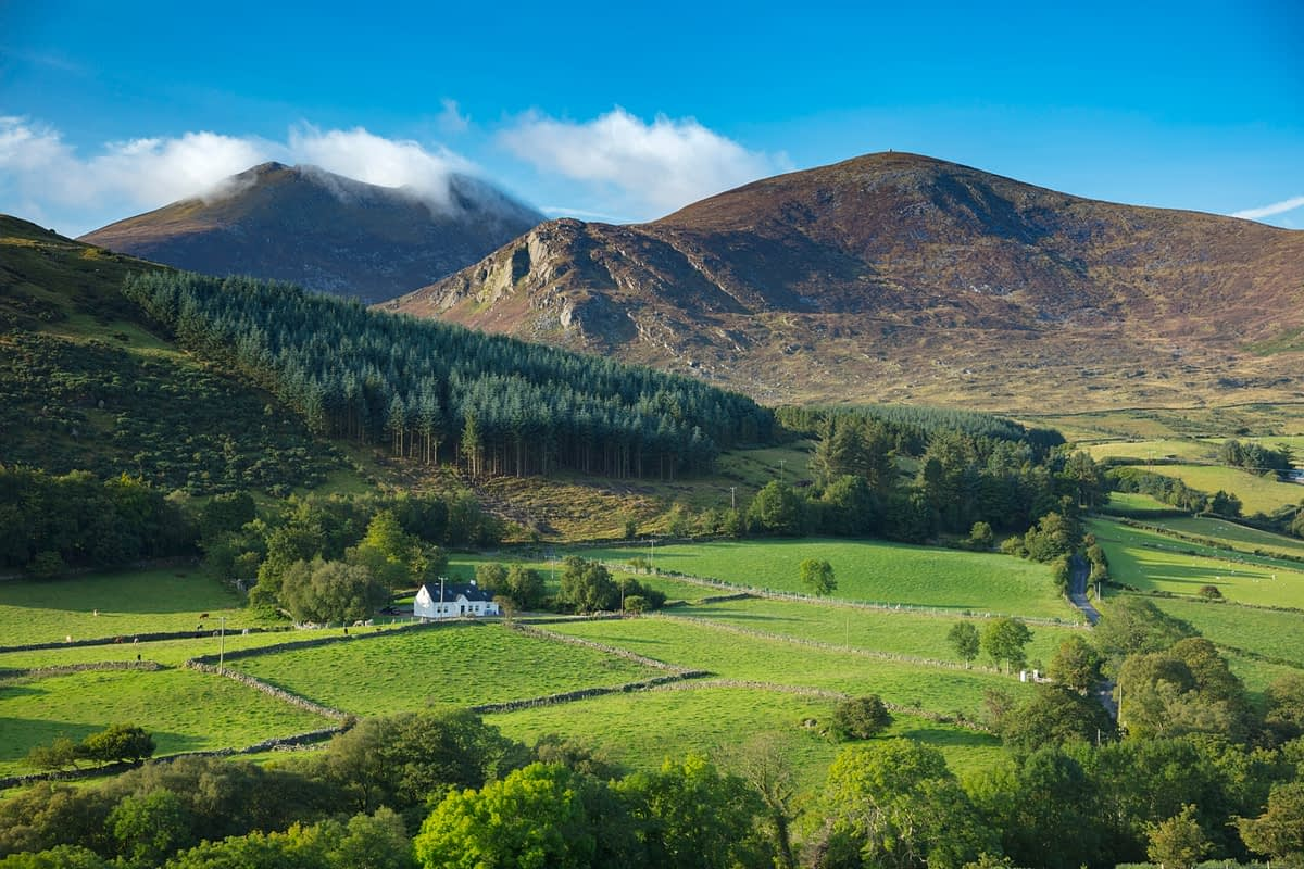 Forest and farmland beneath the Mourne Mountains, County Down, Northern Ireland.