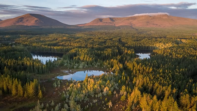 Autumn aerial view over Wild Nephin Wilderness Area to the Nephin Beg Mountains. Ballycroy National Park, County Mayo, Ireland.