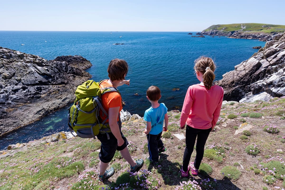 Birdwatching on Great Saltee Island, County Waterford, Ireland.