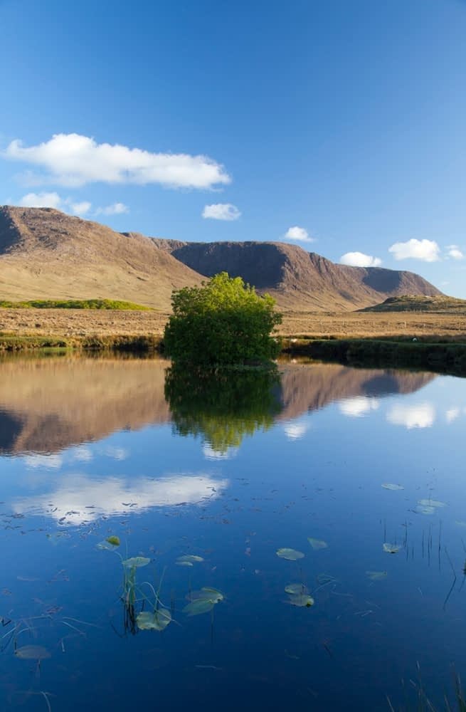 The Partry Mountains reflected in the Owenmore River, Co Mayo, Ireland.